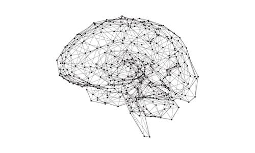 Imagem do curso Compreensão e Gestão do Comportamento Humano - Módulo 2