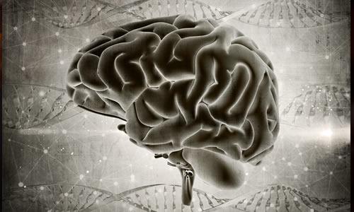 Imagem do curso Reabilitação Multidisciplinar Neurofuncional Adulto