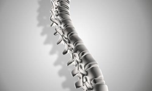 Imagem do curso Fisioterapia nas Algias Posturais da Coluna Vertebral