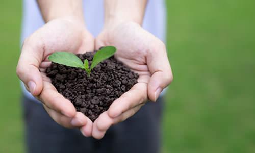 Imagem do curso Auditoria e Perícia Ambiental