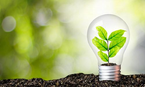 Imagem do curso Gestão do Consumo Sustentável Empresarial