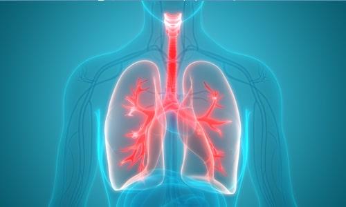 Imagem do curso Fisioterapia Cardiorrespiratória