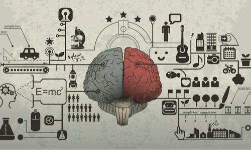 Imagem do curso Neurociências Aplicadas À Educação