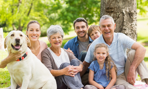 Imagem do curso Estratégia em Saúde da Família