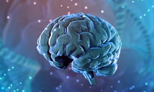 Imagem do curso Comportamento Humano e Neurociência