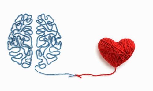 Imagem do curso Inteligência Emocional e Relações Humanas